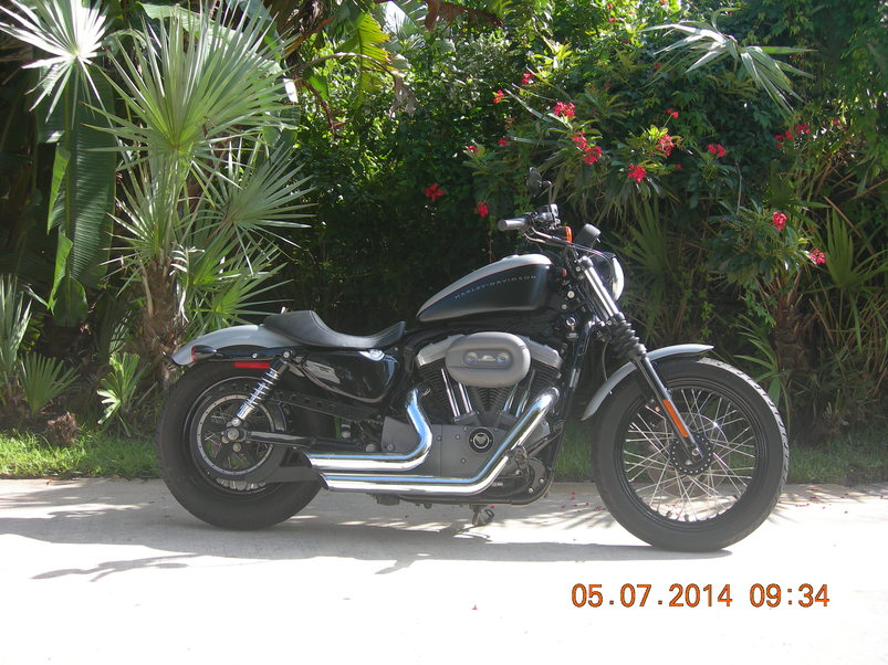 used 2007 harley-davidson sportster 1200 nightster in melbourne beach , florida 32951