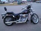2005 Harley-Davidson Softail Standard