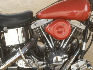 1981 Harley-Davidson Low Rider