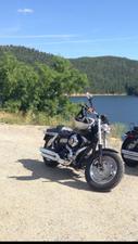 2011 Harley-Davidson Fat Bob