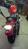 Sportster Roadster