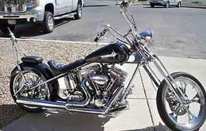 2000 Harley-Davidson TLE