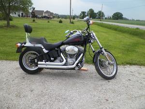 2001 Harley-Davidson Softail Standard