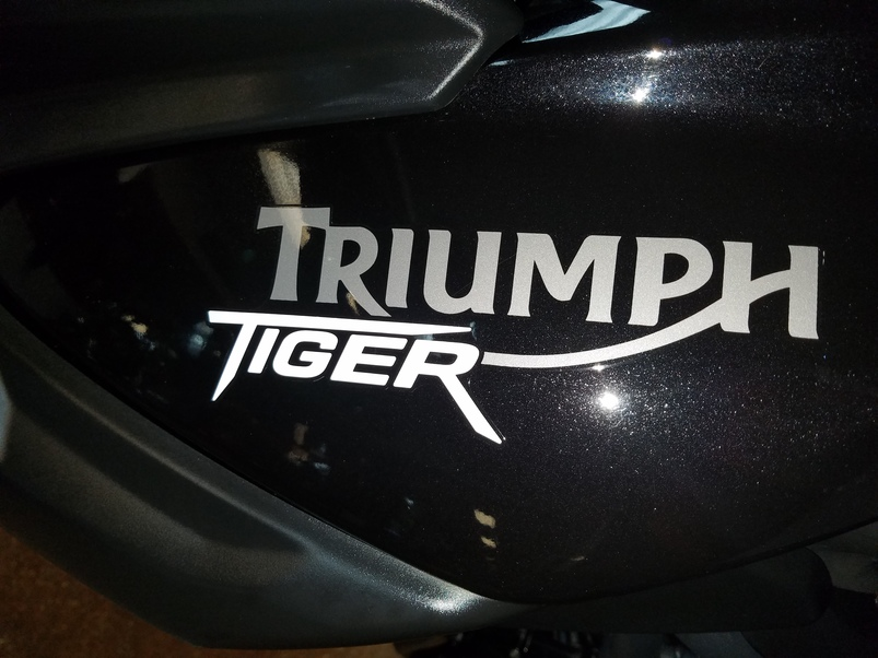 Tiger 800 ABS