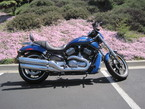 2008 Harley-Davidson Night Rod Special