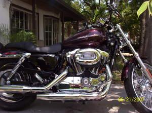 2007 Harley-Davidson Sportster 1200 Custom
