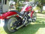 1998 Harley-Davidson Custom