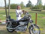 2003 Harley-Davidson Sportster Sport