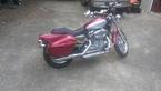2004 Harley-Davidson Sportster Roadster