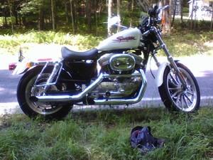 2001 Harley-Davidson Sportster
