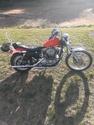 1982 Harley-Davidson Sportster Anniversary