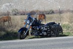 1991 Harley-Davidson Heritage Softail Classic